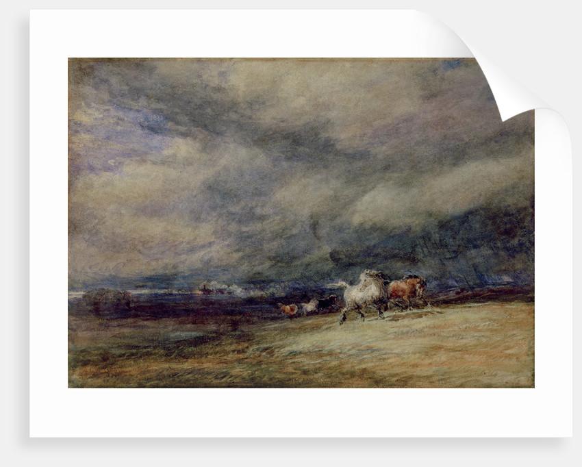 The Night Train, 1849 by David Cox
