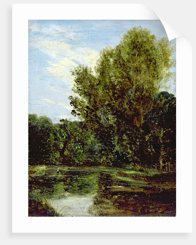 Corner of Hampstead Ponds by John Constable