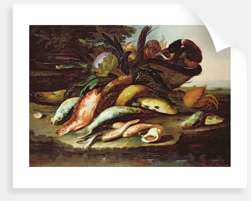 Still Life with Dead Fish and Game by Giuseppe Recco