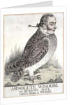 Absolute Wisdom or Queens Owl Taken from a Wood by Richard Dighton