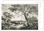 Two cows in a field by George Walker