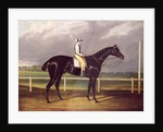 Jerry, Winner of the St. Leger in 1824 by English School