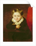 Portrait of the Artist's Son by William Robinson
