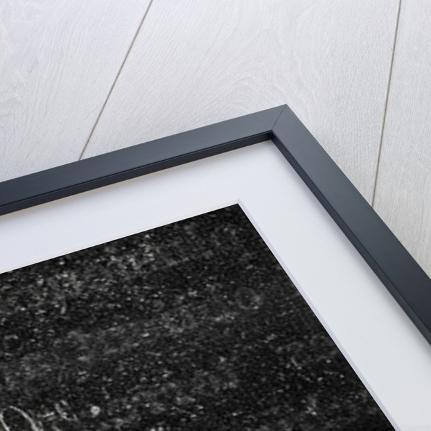 Electric Light Within Laminated Glass by Anonymous
