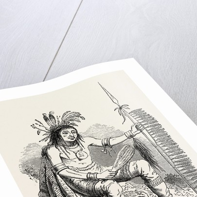 North American Indian by Anonymous