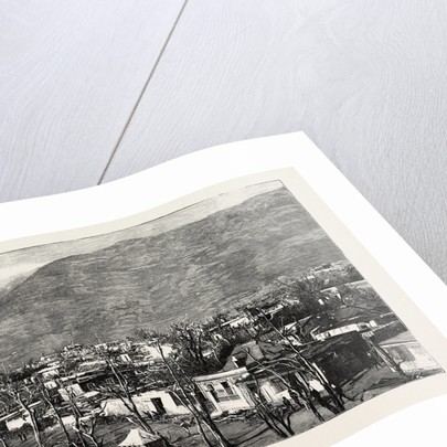 The Hurricane in Mauritius: Views of the Ruins in Port Louis: Ruins of the Upper Portion of the Western Suburb by Anonymous