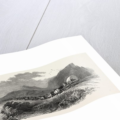 Cape Waggon, South Africa, 1850 by Anonymous