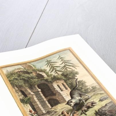 Le Chat, La Balette Et Le Petit Lapin (the Cat, the Weasel, and the Rabbit) by Anonymous