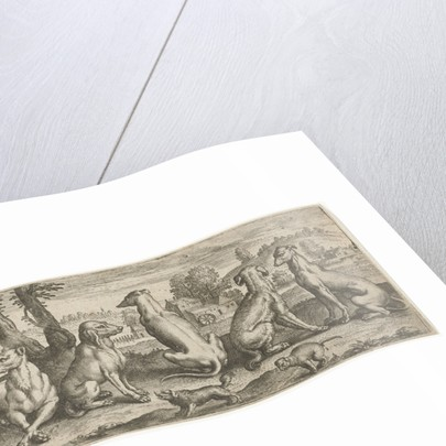 Dogs by Abraham de Bruyn