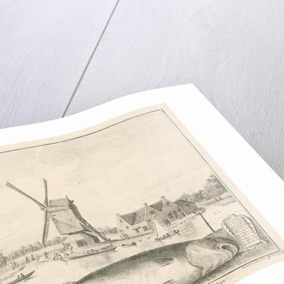Cod caught in 't Spaarne by Cornelis van Noorde