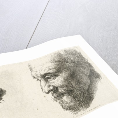 Face of an old man in profile by Johannes Mock