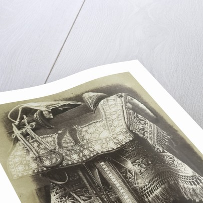 Embroidered Saddle by Hugh Owen