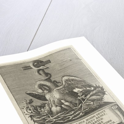 Pelican and the brazen serpent, 12 by Henry Aertssens
