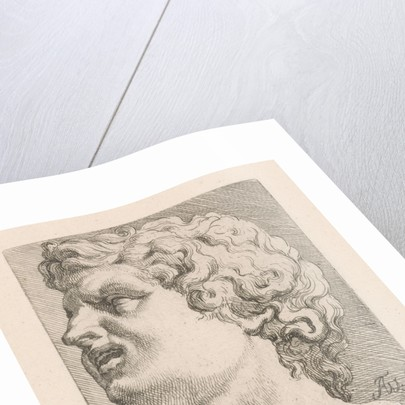 Head of one of the sons of Laocoön, side view by Augustinus Terwesten I