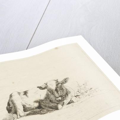 Lying cow by baron Reinierus Albertus Ludovicus van Isendoorn à Blois