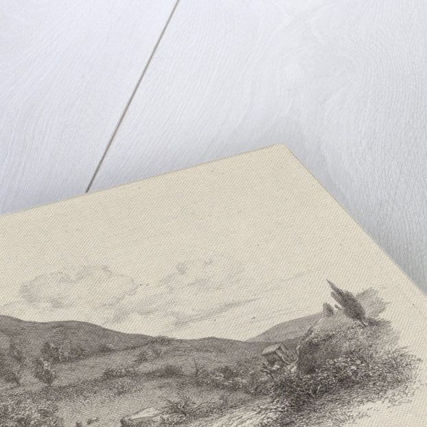 Carriage in a landscape by Jacob Ernst Marcus
