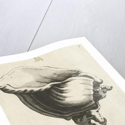 Shell-shaped cup by Christiaen van Vianen