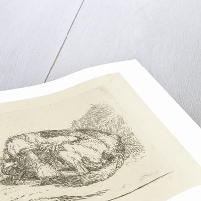 Sleeping dog by Jan Dasveldt
