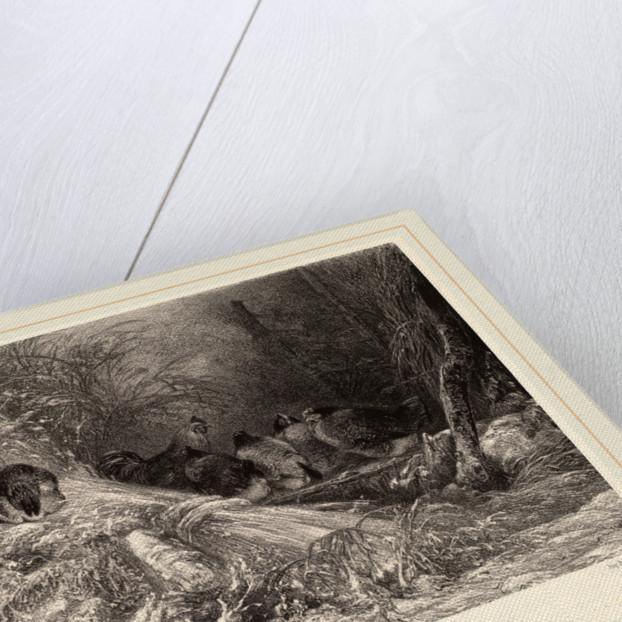 A l'abri du givre, Swiss by Karl Bodmer