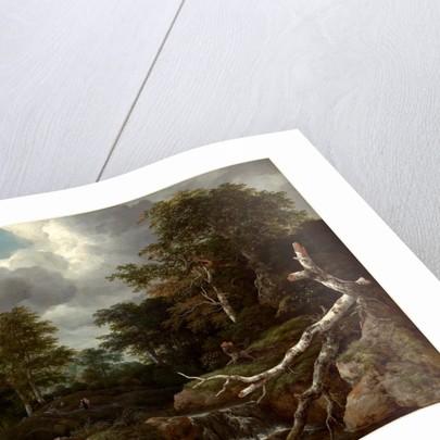 Dutch, Forest Scene, c. 1655 by Jacob van Ruisdael