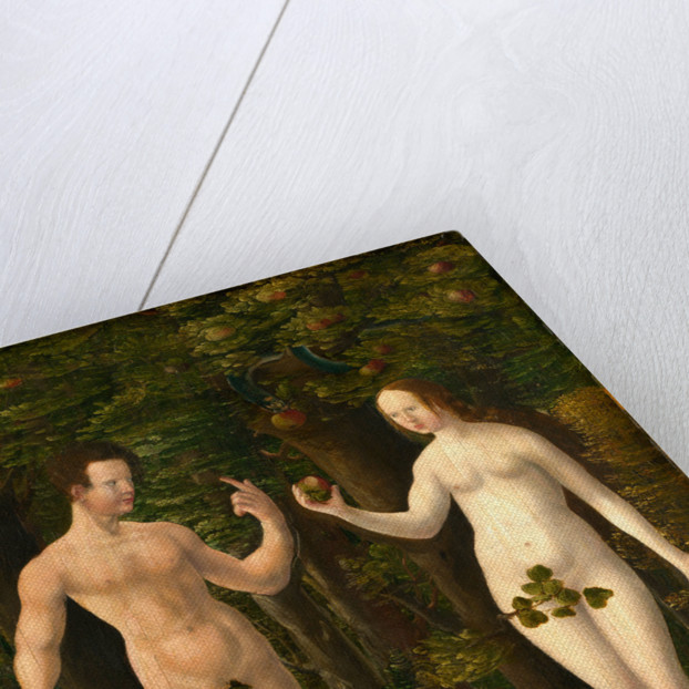 The Fall of Man middle panel, c. 1535, oil on hardboard transferred from panel by Workshop of Albrecht Altdorfer