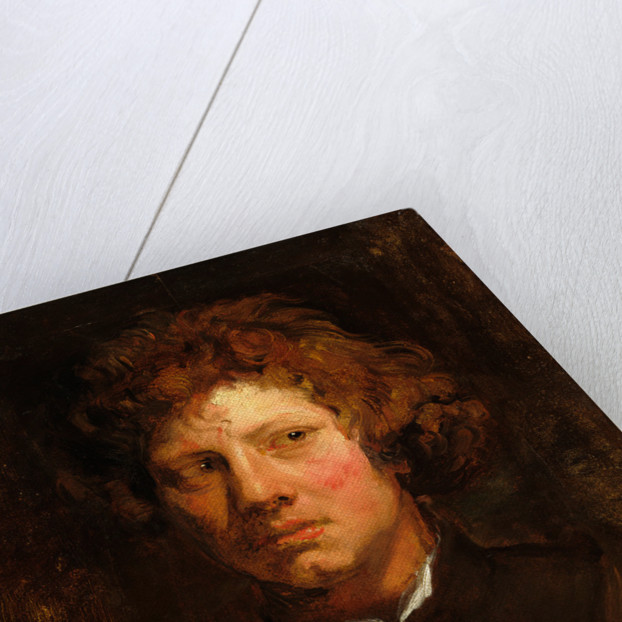 Head of a Young Man by Sir Anthony van Dyck