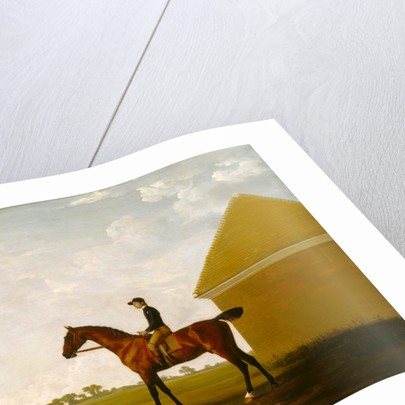 Turf, with Jockey up, at Newmarket by George Stubbs