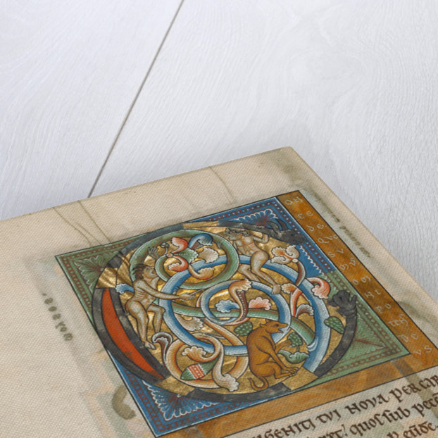 Inhabited Initial C by Anonymous