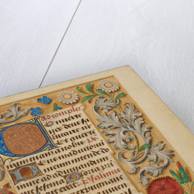 Decorated Initial C by Anonymous