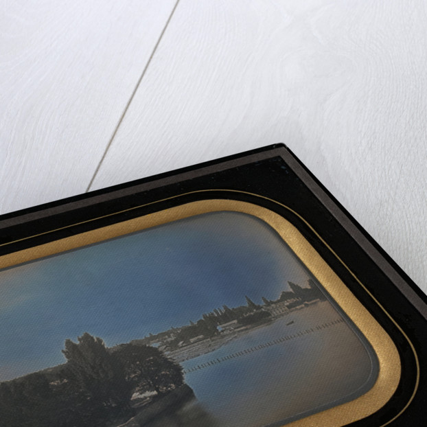Cityscape of Geneva by Jean-Gabriel Eynard