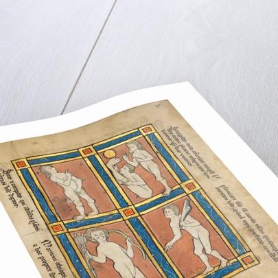 Antipode, Scinopode, Coastal Ethiopian, Psalmlarus by Anonymous