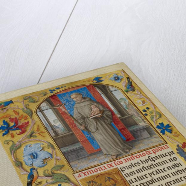 Saint Anthony of Padua by Master of James IV of Scotland