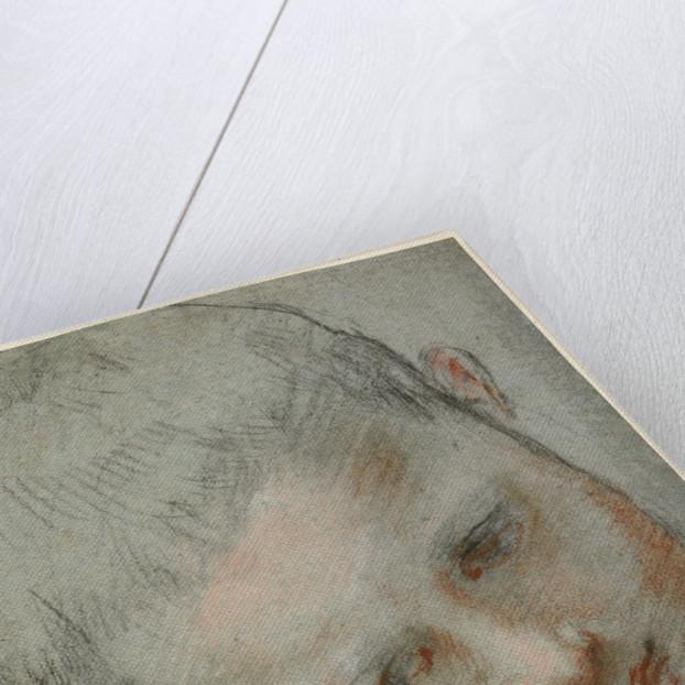 Head of a Boy (recto), Figure Studies (verso) by Federico Barocci