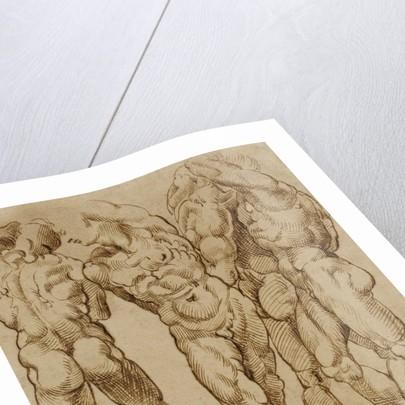 Nude Studies by Bartolomeo Passarotti