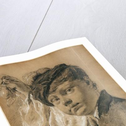 A Boy Holding a Pear (Giacomo Piazzetta?) by Giovanni Battista Piazzetta