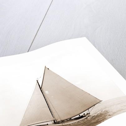 Freak (Yacht) by Anonymous