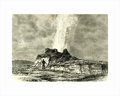 The Castle Geyser in Action 1891 USA by Anonymous