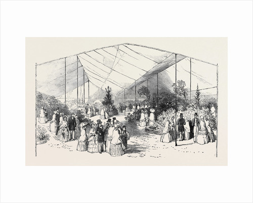 Exhibition of American Plants at the Royal Botanic Society's Gardens, Regent's Park by Anonymous