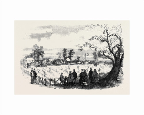 Agricultural Draining Match on the Duke of Sutherland's Estate at Trentham Staffordshire. by Anonymous