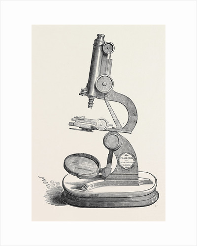 Pillischer's Microscope, the Great Exhibition by Anonymous