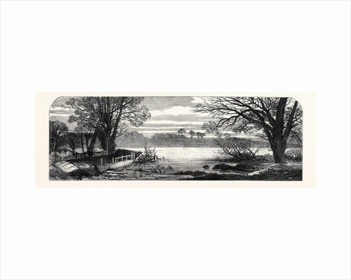 The Hunting Disaster in Yorkshire: The Ferry-Boat on the Ure 1869 by Anonymous
