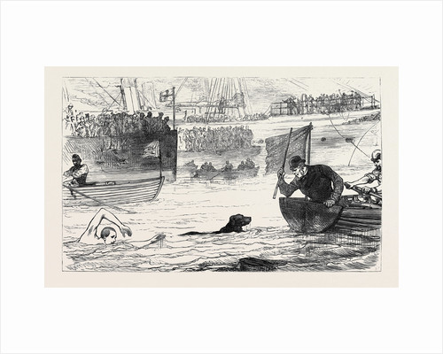 Swimming Match Between a Dog and a Man 1880 by Anonymous