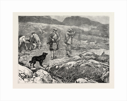 Grouse Shooting, 1870 by Anonymous
