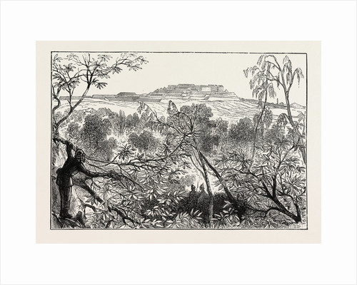 A Peep at Mont Valerien: The Woods of Celle St. Cloud, France, 1870 by Anonymous