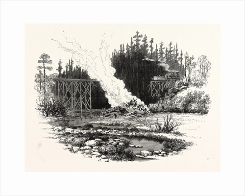 North Carolina: Wrecking of the Passenger and Freight Train at Indian Creek Trestle December 23rd by Anonymous