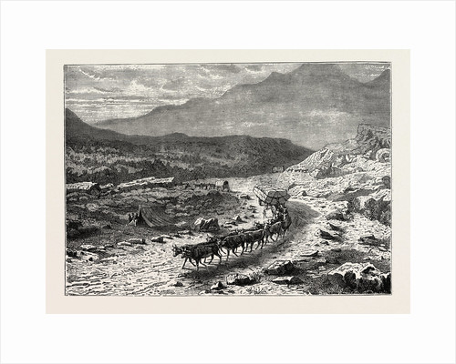 A Bullock Waggon On Its Way To The Diamond Fields, South Africa by Anonymous