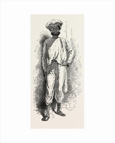 Inhabitant of the Matheran Range, Western Ghauts by Anonymous