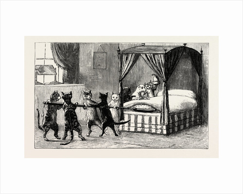 The Dame Was Unabe Her Pleasure to Smother. Cats Heating the Bed by Anonymous