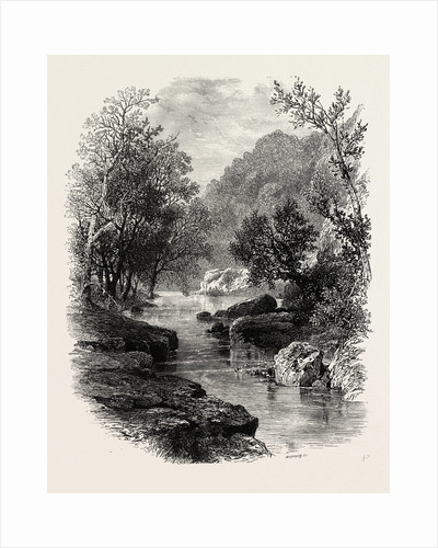 The Valley of the Wharfe, the Forest Scenery of Great Britain by Anonymous