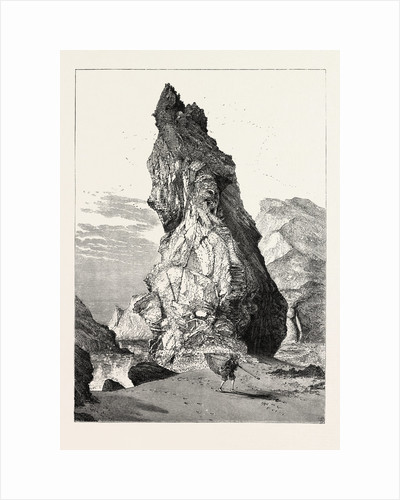 The Steeple, Kynance Cove, the South Coast by Anonymous